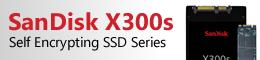 SanDisk X300s